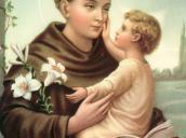 """""""Święci prowadzą nas do Boga i uczą..."""